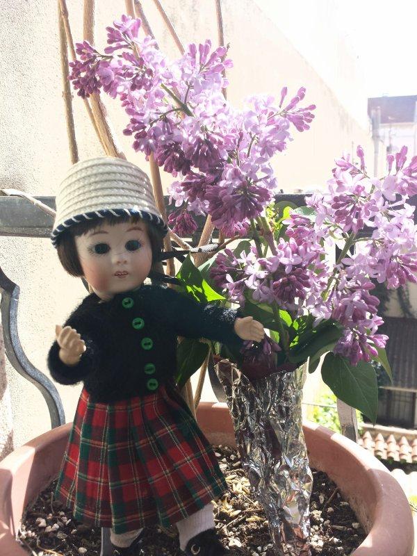 Loli ! Loulotte ! lilas !