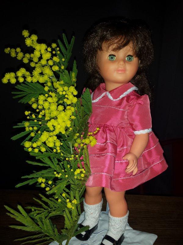 Winnie prend la pose pour Joyce ! et Marie-Françoise cueille le mimosa