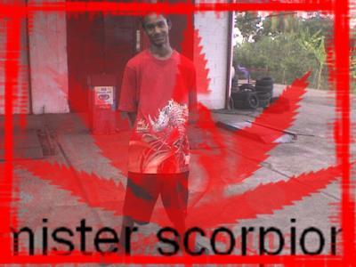 ME  scorpion de base [ MISTER scorpion ]