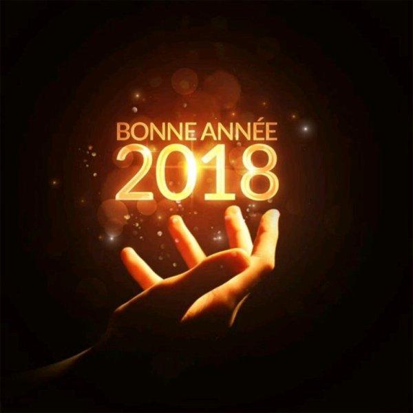 Bonne année 2018.....