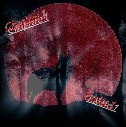 Chapitre I :  La nuit de la Lune rouge