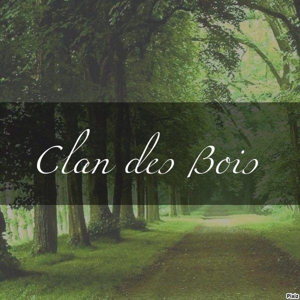 Clan des Bois