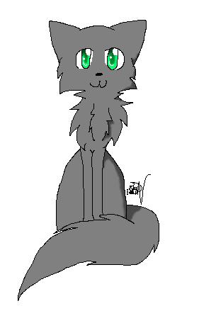 Dessin - Chat gris