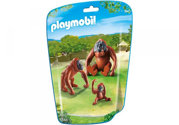 6648 Deux orangs-outangs avec bébé