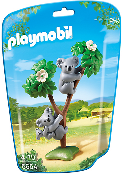 6654 Famille de koalas