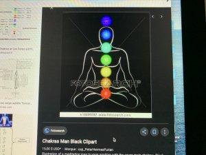 subtil intuition Ö magnétite des chakras