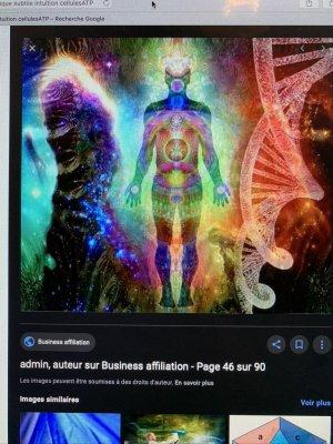 l'intelligence du blob l'ËÄÜ Ö mycélium virus