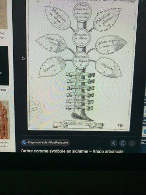 arbre Ö drÖgÜË Oxygène alchimie 7chaKras mÄsqÜË9