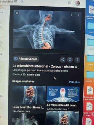 CÄÜSË9-électromagnétologie gliales et ventre