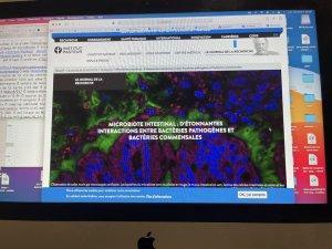 CÄÜSË9 du PREVOTELLA Ö nanoparticules