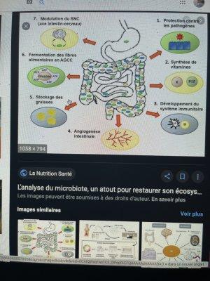 psychiatrologie Lacan épigénétologie Ö astrocyte