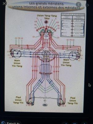 école pétoncle vÄgÜË9 7chakras électromagnétologie