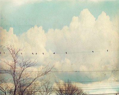 Simplement seul