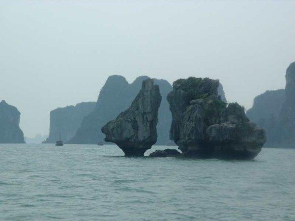 Chapitre 1 : Début des mes aventures en mer