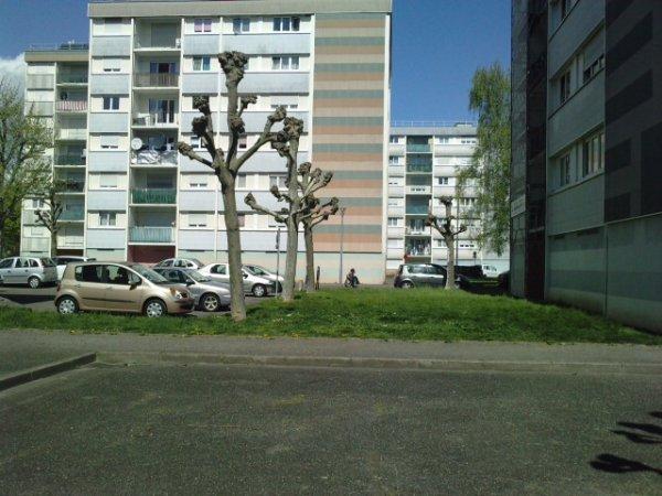 KIRCHFELD (Ostwald)