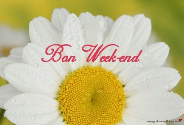 BON WEEK-END   A   TOUT   LE   MONDE