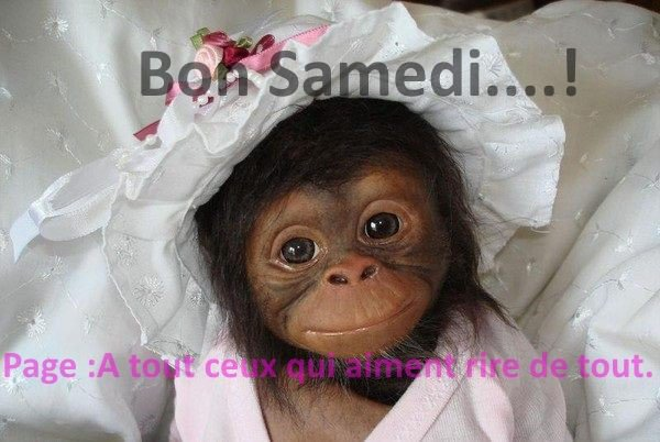 A VOUS TOUS ET TOUTES,BON WEEK-END,ET SAMEDI !!!!!!!!!!!!