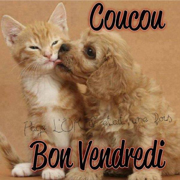 A VOUS TOUS ET TOUTES BON VENDREDI !!!!!!!!!!!!