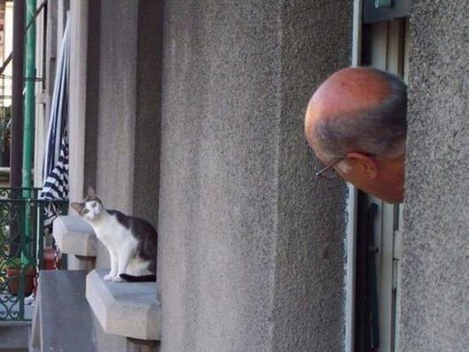 voilà de bons voisins