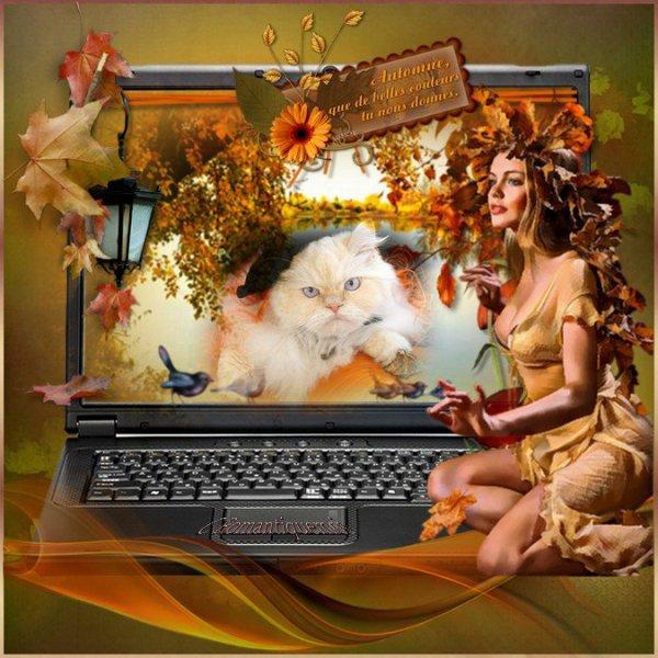Une jolie création du blog de mon amie VIVI! Merci !Tout à fait l'Automne nous donne de belles couleurs! bisous Ginette!