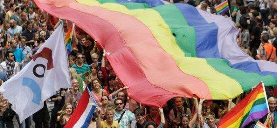 Lutte contre l'homophobie !