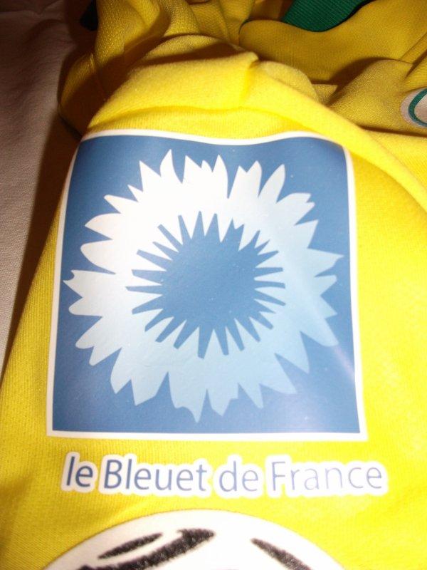 """Le patch """"le Bleuet de France"""" commémorant le 96éme anniversaire de l'Armistice."""