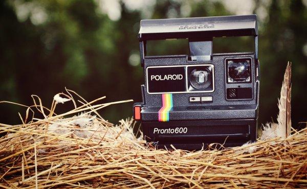 Konica & Polaroid