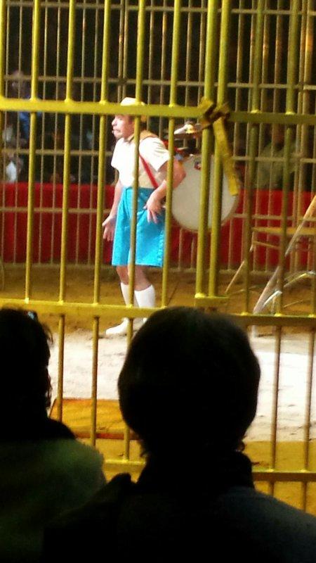 Cirque de Saint-Pétersbourg 4