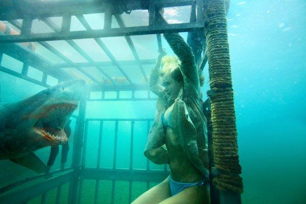 Première photo de Shark Night 3D