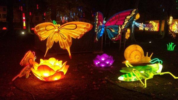 Fête des lanternes à Gaillac (Tarn) ! sublime !