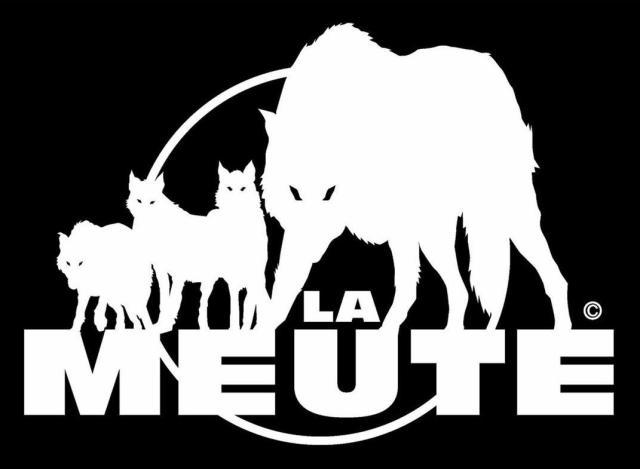 logo de LA MEUTE fond black