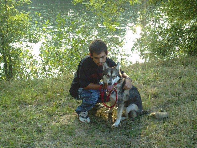 Blog de wolf2saarloos