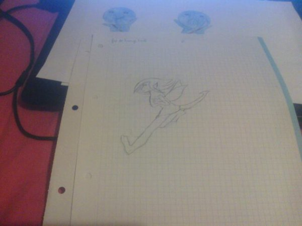 Mes dessins de fair tail  nº1
