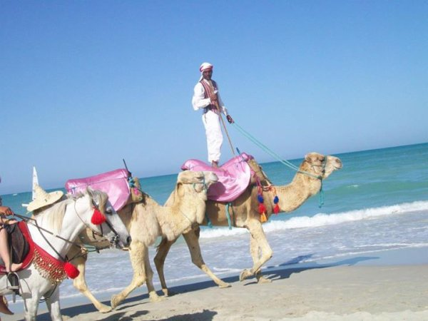 Tunisie ♥
