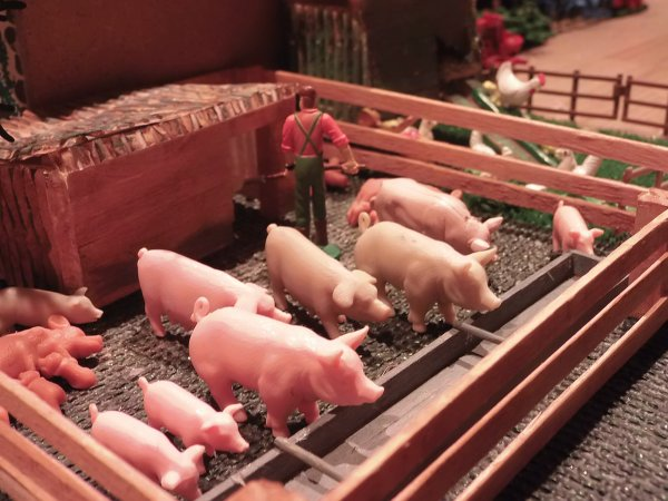 a table mes petits cochons