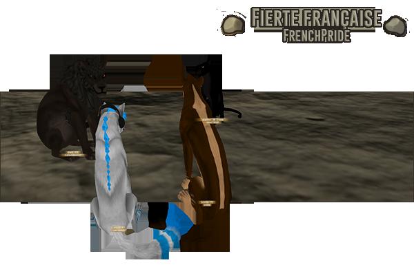 FrenchPride (fierté française)