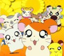 Photo de HAMTARO-MUSiiC