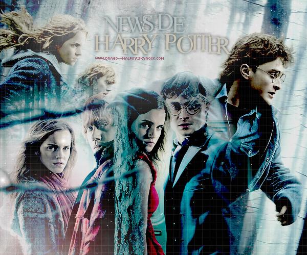 . 11.02.11 | Sortie des DVD de Harry Potter 7 + Dessin conceptuel de HP7 + Photos du tournage de HP7- Partie 2 . • La Warner Bros France à dévoilée les dates de sorties des DVD de Harry Potter et les Reliques de la Mort première partie! Cette sortie se feras en deux vagues, le 8 Avril sortiras le DVD collector édition spéciale fans et de l'ultimate collection Bluray (-BluRay DVD/Copie digitale)! Et le 20 Avril sortiras le DVD simple! Vous pouvez voir un récapitulation en image (-ici)! . • Andrew Williamson qui à travaillé sur tous les Harry Potter, à dévoilée des dessins conceptuels qu'il a exécuté pour Harry Potter_ et les Reliques de la Mort première partie! Vous découvrirez les dessin du Manoir des Malfoy, du mariage Weasley, de la maison des Lovegood, la Chaumière au Coquillage, la nouvelle fontaine du Ministère! Les dessins sont à voir (-ici)! . • Un des acteurs ayant participé aux tournage du film Harry Potter et les Reliques de la Mort deuxième partie, Nasir Nasser, à mis en ligne des photos de lui en costume, sur le tournage du film! Il interprété un Mangemort, un sorcier du Ministère et également un des Gardes de la Banque de Gringotts! Vous pouvez voir les photos de Nasir (-ici)!