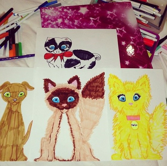 Pictures I drew of my pets I love making art :)