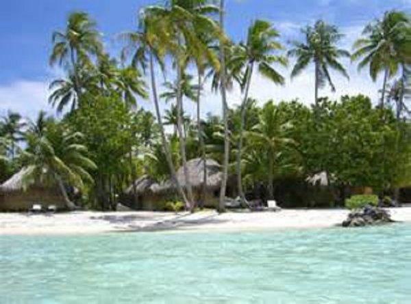 PARADIS NATUREL HAWAI LA BEAUTE LE DEPAYSEMENT LE SUBLIME JE KIF TROP M EVADER TOUT OUBLIER ABSOLUMENT TOUT TOUT TOUT