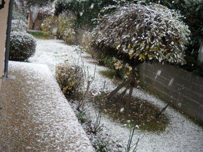27 novembre 2010 l'hiver est déja la avec la neige
