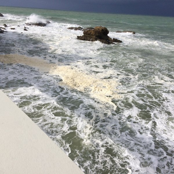 Samedi 4 Mars 2017 Cambo les bains et Biarritz