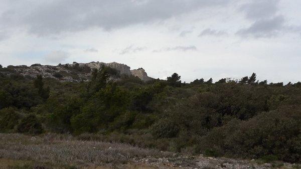 Week end du 4 et 5 Février à La Grande Motte