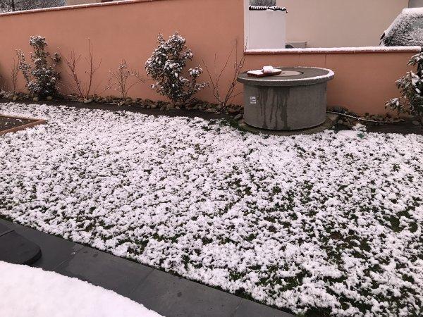 Jeudi 8 Février 2018 un peu de neige ce matin