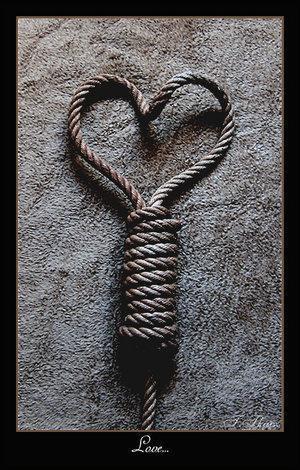 image amour mort