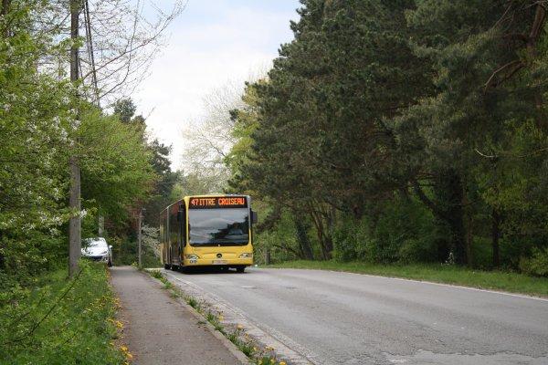 Bus 905491.