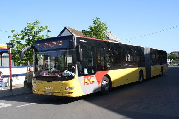 Bus 966103.