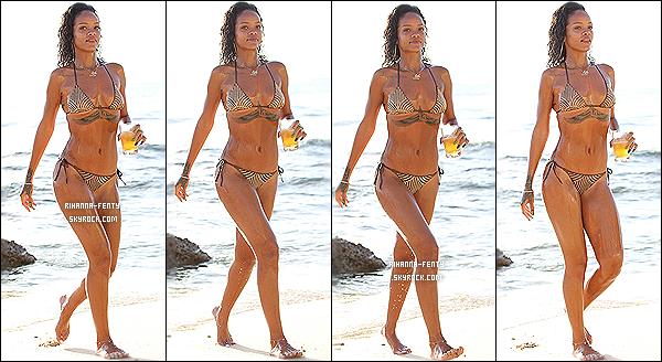 _ 28/12/13 : Rihanna Fenty a été photographiée faisant une virée en jet ski, toujours sur son île natale la Barbade. -