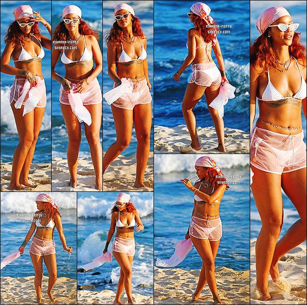 _ 25/04/2015 : Rihanna F. a été photographié prenant du bon temps avec ses amies sur une plage de l'île de Hawai.