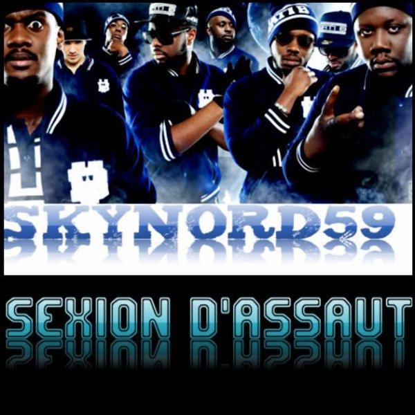 Tournée 2013 SEXION D' ASSAUT